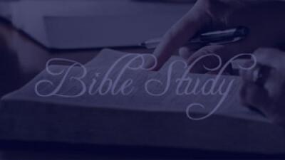 Bible Study - Live Service